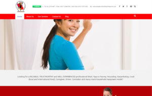PNGS Client - Wadyong Maid Services